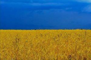 Ukrainian-flag