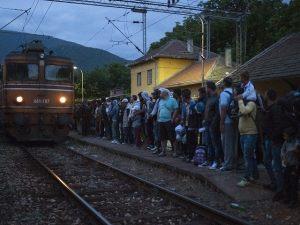 migrants 3